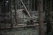 Überall liegen entwurzelte Bäume im Weg. (Bild: Pius Amrein (Lieli, 8. Januar 2018))