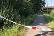 Hier, unweit der Reussbrücke, soll die 26-jährige Frau vergewaltigt worden sein. (Bild Luzerner Polizei)
