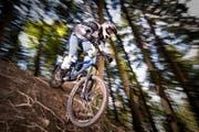 In Obwalden soll das Biken im Wald auf Waldstrassen und -wege sowie spezielle Pisten beschränkt werden. (Bild: Roger Grütter / neue LZ)