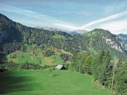 Der Wellenberg von Oberrickenbach aus gesehen. (Bild: PD)