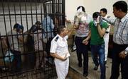 Homosexuelle werden in Ägypten seit Jahren verfolgt. (Bild: Hassan Ammar/AP (Kairo, 1. November 2014))