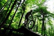 Ein Biker unterwegs im Wald. (Bild: Keystone)
