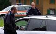 Während der Fasnacht finden vermehrt Polizeikontrollen statt. (Archivbild Michael Buholzer/Neue LZ)