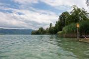 Zugersee von der Hünenberg Badi aus. Fotografiert am 13. Juli 2017 in Hünenberg. Zuger Zeitung/Maria Schmid See, Wasserqualität, Wasser, Schweiz (Bild: Maria Schmid)