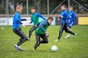 Vorbereitung auf holprigem Rasen: Die Färöer (Brandur Olsen am Ball) bekunden Mühe mit dem schwer bespielbaren Terrain im Gersag-Stadion in Emmen. Bild: Roger Grütter (Emmen, 11. November 2016)