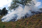 Eine Wiese in Uffikon fing Feuer. (Bild: Luzerner Polizei)