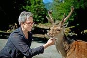 Sie mag am liebsten Wölfe, Esel und Frösche, aber auch der Sikahirsch kriegt bei Gelegenheit Streicheleinheiten ab: Anna Baumann, Direktorin des Natur- und Tierparks Goldau, der für sie in unserer eher «naturfeindlichen» Zeit von immenser Bedeutung ist. (Bild Pius Amrein)