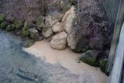Gewässerverschmutzungen werden immer häufiger durch Baustellenabwasser verursacht. (Bild: PD)