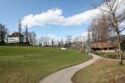 Am Tribschenhorn soll eine Freilaufzone für Hunde eingerichtet werden. (Archivbild: Luzernrer Zeitung)