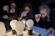 Die eingeladenen Schülerinnen aus Reiden erforschen verschiedene Lichtquellen mittels Spektroskop. (Bild: PH Luzern)