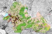 Farbige Planinsel: Zwischen Lauerzersee und Ibergeregg ist der Einschränkungskataster schon ausgearbeitet. (Bild: Screenshot: Ab map.geo.sz.ch)