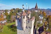 Die Museggmauer in Luzern bietet nicht nur den Besuchern viel. Zugvögel, Fledermäuse, Bienen und Pflanzen finden hier einen selten gewordenen Lebensraum.