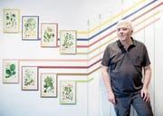 Ebbe Nielsen, stv. Kantonsarchäologe, vor Exponaten der aktuellen Ausstellung im Natur-Museum. (Bild: Boris Bürgisser (Luzern, 22. Dezember 2017))