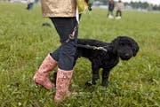 Eine Frau mit ihrem Tier in der Hundeschule. (Bild: Keystone)