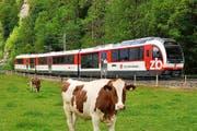 Ein «Fink» der Zentralbahn. Fünf dieser Kompositionen will die ZB bestellen. (Bild: PD)