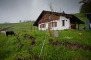 Ein vom Hangrutsch betroffenes Haus im Gebiet Hintergraben. Der Besitzer musste es im Mai verlassen. (Bild: Pius Amrein / Neue LZ)