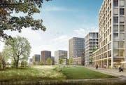 Die Visualisierung zeigt den Stadtteil beim zentralen Park an der alten Lorze, der die Verbindung zum Riedmatt-Quartier herstellen soll. Bild: (Bild: PD)