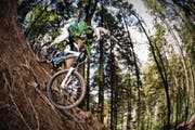 Mountainbiken ist in Luzerner Wäldern derzeit abseits markierter Pisten oder befestigter Wege verboten. (Symbolbild: Roger Grütter)
