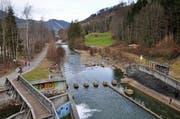In diesem Bereich unterhalb des Wichelsee-Wehrs in Alpnach soll ein künftiger Stollen im Rahmen des Hochwasserschutzprojektes Sarneraa von rechts in die Sarneraa/Grosse Schliere einmünden. (Bild: Robert Hess / Neue OZ)