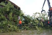 In Oberägeri stürzte ein Baum auf ein Hausdach. Verletzt wurde niemand. (Bild: Zuger Polizei)