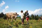 Zwei Kinder aus dem Aargau besuchen die Kuh Primeli - ihre Familie hat das Tier auf der Alp Matt in Obwalden geleast. (Bild: PD)