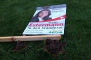 So sah das Plakat von Yvette Estermann in Wolhusen am Sonntag noch aus. (Bild: pd)