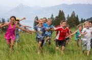 Lebensfreude pur: Kinder durchpflügen eine Alpwiese bei der Ribihütte ob Giswil. Das Bild entstand Anfang Juli 2015. (Bild: Philipp Schmidli / Neue LZ)