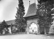 Das Kinderheim in Rathausen auf einer undatierten Aufnahme aus der ersten Hälfte des 20. Jahrhunderts. (Bild: Staatsarchiv Luzern)