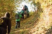 Die Wolhuser Primarschüler können dank des Unterrichts in der Natur an ihren individuellen Zielen arbeiten. (Bild: PD/Rita Pauchard)