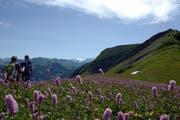 Wanderer wie hier am Wilerhorn sind das Zielpublikum. (Bild: Markus von Rotz / Neue NZ)