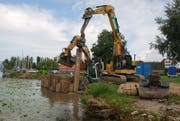 Lastwagen um Lastwagen transportieren in diesen Tagen Erdmaterial ins Pfäffiker Ried, um die weggespülten Flachufer wieder zu ersetzen. (Bild: PD)