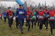 Über 200 Läufer nahmen an der dritten Ausgabe des «Lozärner Cross» teil. (Bild: PD / Gabriel Kaspar)
