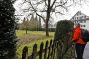 Östlich des alten Bauernhauses an der Seestrasse wird ein Mehrfamilienhaus gebaut. Dafür bleibt die Bossardwiese unangetastet. (Bild Stefan Kaiser)