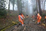 Die Lernenden beim Ersetzen von Holzschwellen der Krienser Sonnenbergbahn. (Bild: pd)