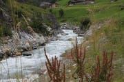 Die Wasserkraft im oberen Teil des Chärstelenbachs im Maderanertal soll durch die Erstellung eines neuen Kraftwerks langfristig genutzt werden. (Bild: Florian Arnold / Neue UZ)