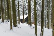 Eine der illegal erstellten Bauten im Krienser Hochwald, die vor rund zwei Jahren für Schlagzeilen sorgten. (Bild: Roger Gruetter (19. Februar 2016))
