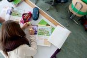 Eine Schülerin beim Lösen von Englischaufgaben. (Bild: Boris Bürgisser (Sursee, 14. Oktober 2013))