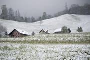 Schnee liegt auf den Daechern auf der Hoehe der Schneefallgrenze etwas oberhalb von Stans im Kanton Nidwalden (Bild: Urs Flüeler/keystone)