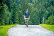 So wie im Vordergrund sollte ein Wanderweg aussehen. Asphalt hingegen ist suboptimal. Elias Vogler vom Verein Luzerner Wanderwege in der Nähe der Krienseregg. (Bild Dominik Wunderli)