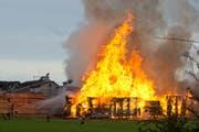 Die Sägerei in Ligschwil (Gemeinde Hochdorf) brannte lichterloh. (Bild Dominik Wunderli)