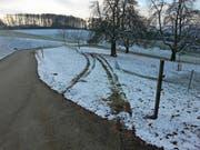 Das beschädigte Schneefangnetz im Gebiet Oberwellnau in Triengen. (Bild: Luzerner Polizei)