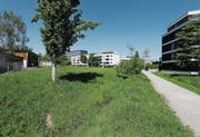 Die Ecke des Baus, die mit dem Profil gekennzeichnet ist, soll zu nahe am «Rankbächli» sein. (Bild: Stefan Kaiser (Zug, 10. Mai 2017))