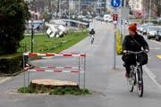 Die Rotbuche neben dem Regierungsgebäude in Zug musste gefällt werden. (Bild: Stefan Kaiser / Neue ZZ)