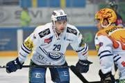 Ambri-Piottas Michael Fora (Nr. 29): bald in der NHL? (Bild: Michela Locatelli/freshfocus (Lugano, 10. Dezember 2016))