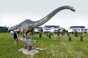 Imposant wirken die riesigen Dinosaurier-Modelle vis-à-vis vom Strandbad. Bild: Werner Schelbert (2. Oktober 2016)