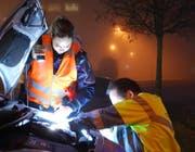 Mit gekonnten Handgriffen werden die defekten Beleuchtungskörper repariert (Bild: Luzerner Polizei)