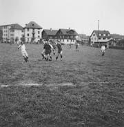 Oben links: So präsentierte sich das Krienser Kleinfeld im Jahr 1958.
