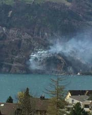 Der Böschungsbrand an der Isenthalerstrasse. (Bild: pd)
