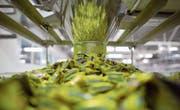 Nestlé wird im Swiss Market Index am stärksten gewichtet. Hier wird gerade Nesquik-Süssware verpackt. (Bild: Andrey Rudakov/Bloomberg (Samara, 16. September 2014))