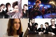 Am neuen Festival treten insgesamt 17 Bands auf, darunter (von oben links im Uhrzeigersinn) sind April Calls, Hairdryer, Rival Kings und Miss Goldie. (Bild: PD)